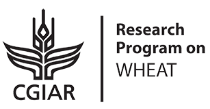 CGIAR Research Program on Wheat